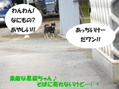 Ten_sanpo07